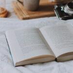 """O carte pe zi: """"Omulețul rușu"""" de Doina Ruști"""
