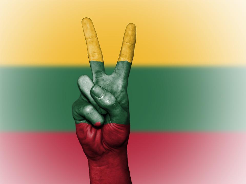 Steag LITUANIA